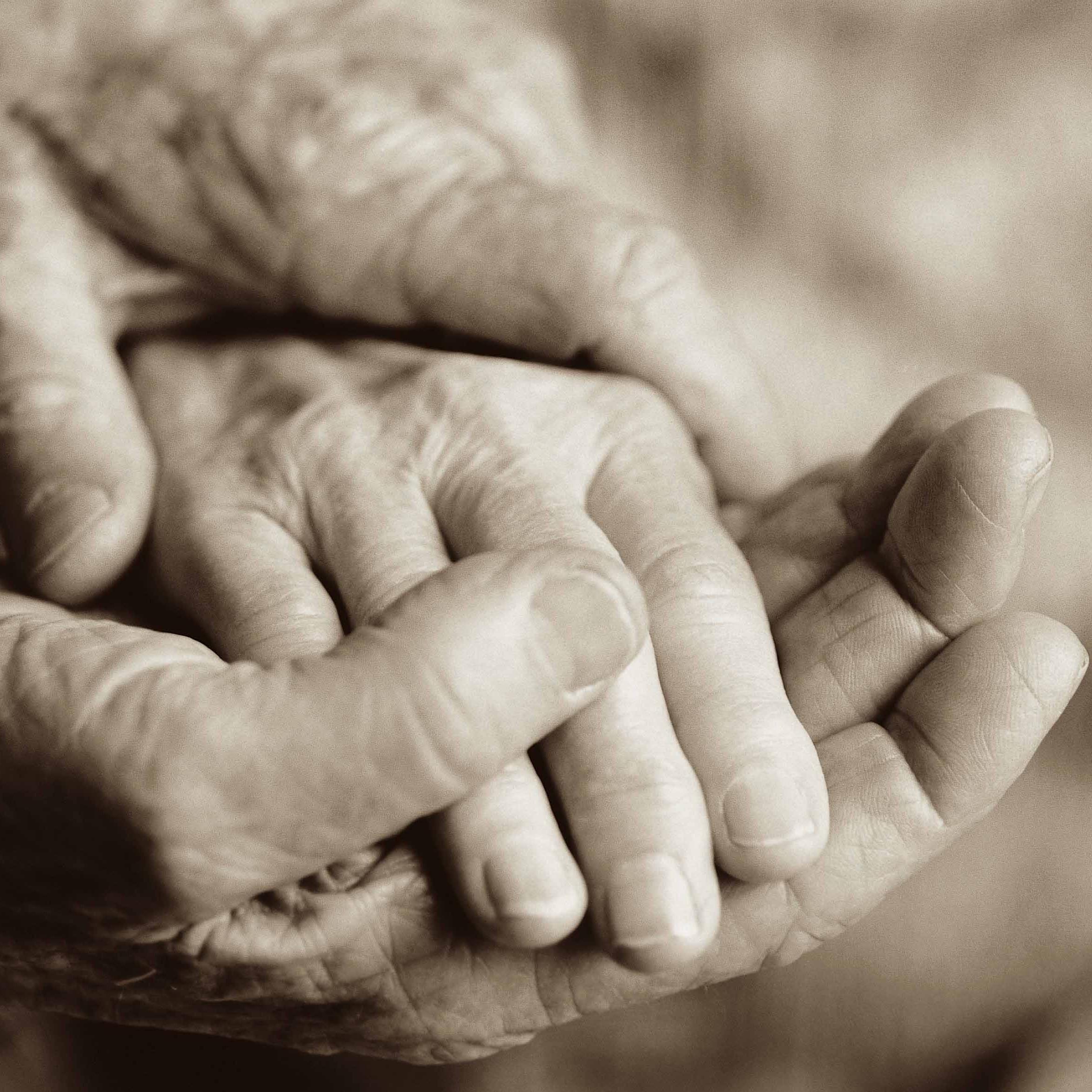 euthanasia pros and cons essays studymode the pros yes and cons no of euthanasia debateorg